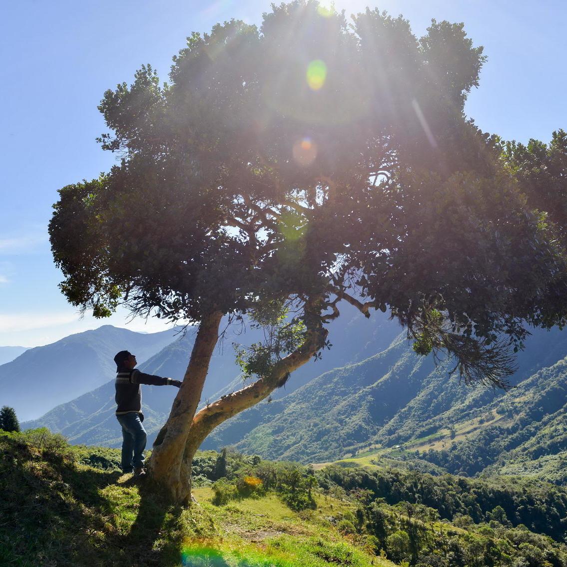 La mancomunidad del chocó andino en realidad virtual